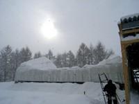 雪でつぶれためん羊舎.jpg