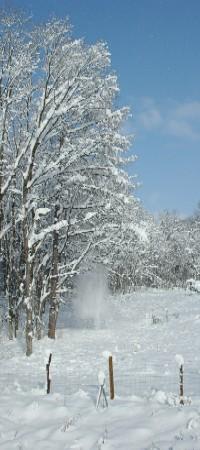 2007年初雪の図.JPG