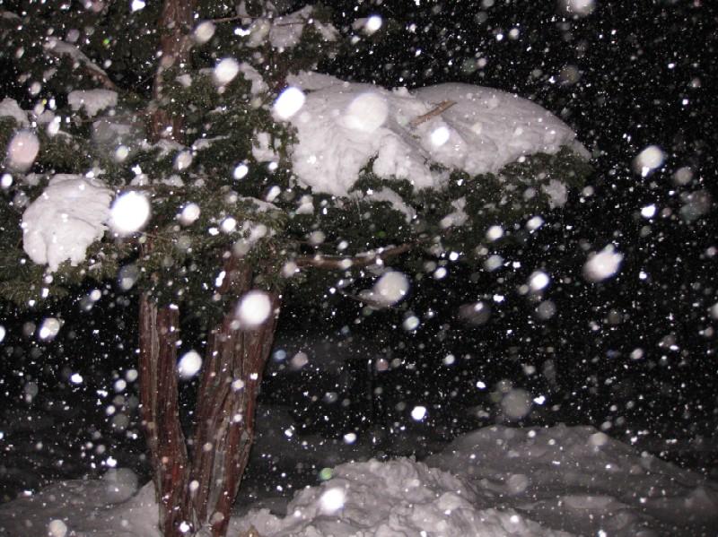 2009.1226吹雪.jpg