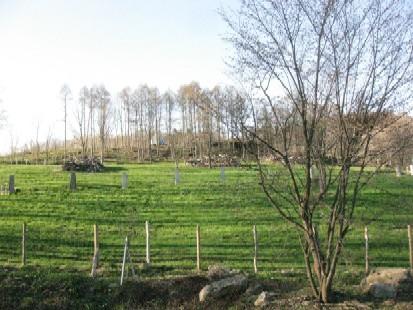 2010.0509北海道サフォーク牧場の春IMG_1191.jpg