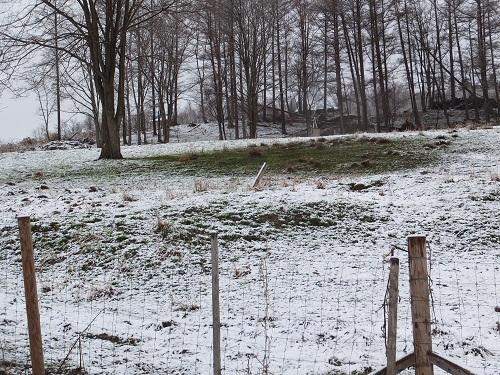 2013.0503北海道サフォーク牧場の雪景色DSCF2196