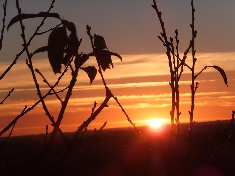 2013.0607NZパーマストンノースで夕焼けDSCF2840