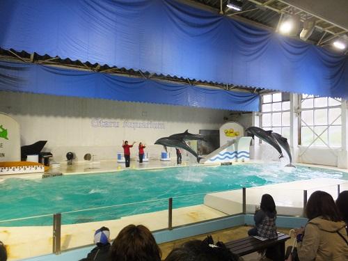 2014.0519小樽水族館DSCF0681