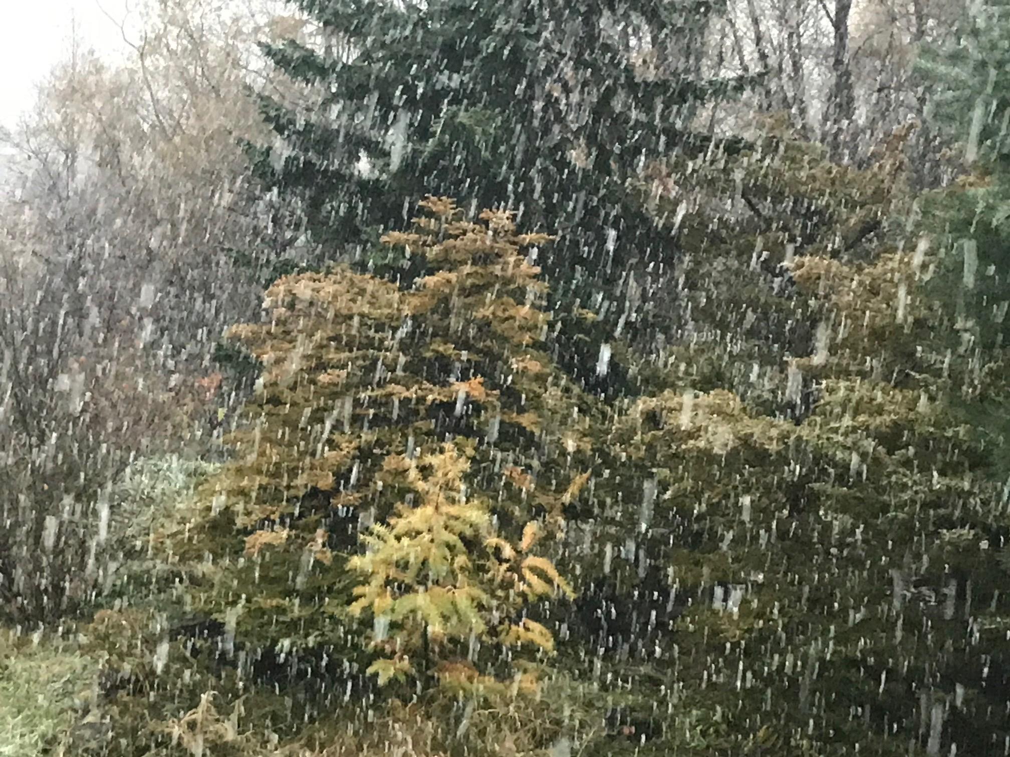 2017.1030雪が降るIMG_4972