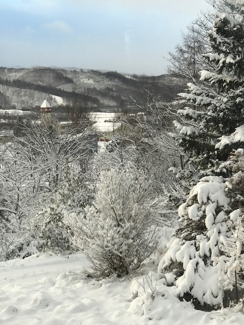 2017.1120雪の日G_5248